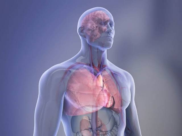 How do strokes affect the circulatory system?