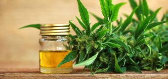 Some of the key benefits CBD Oil tends to show: